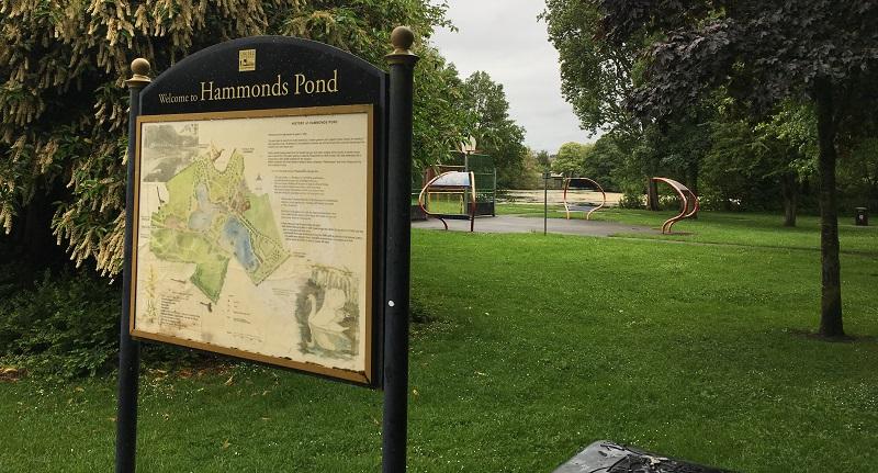 Hammonds Pond in Carlisle.