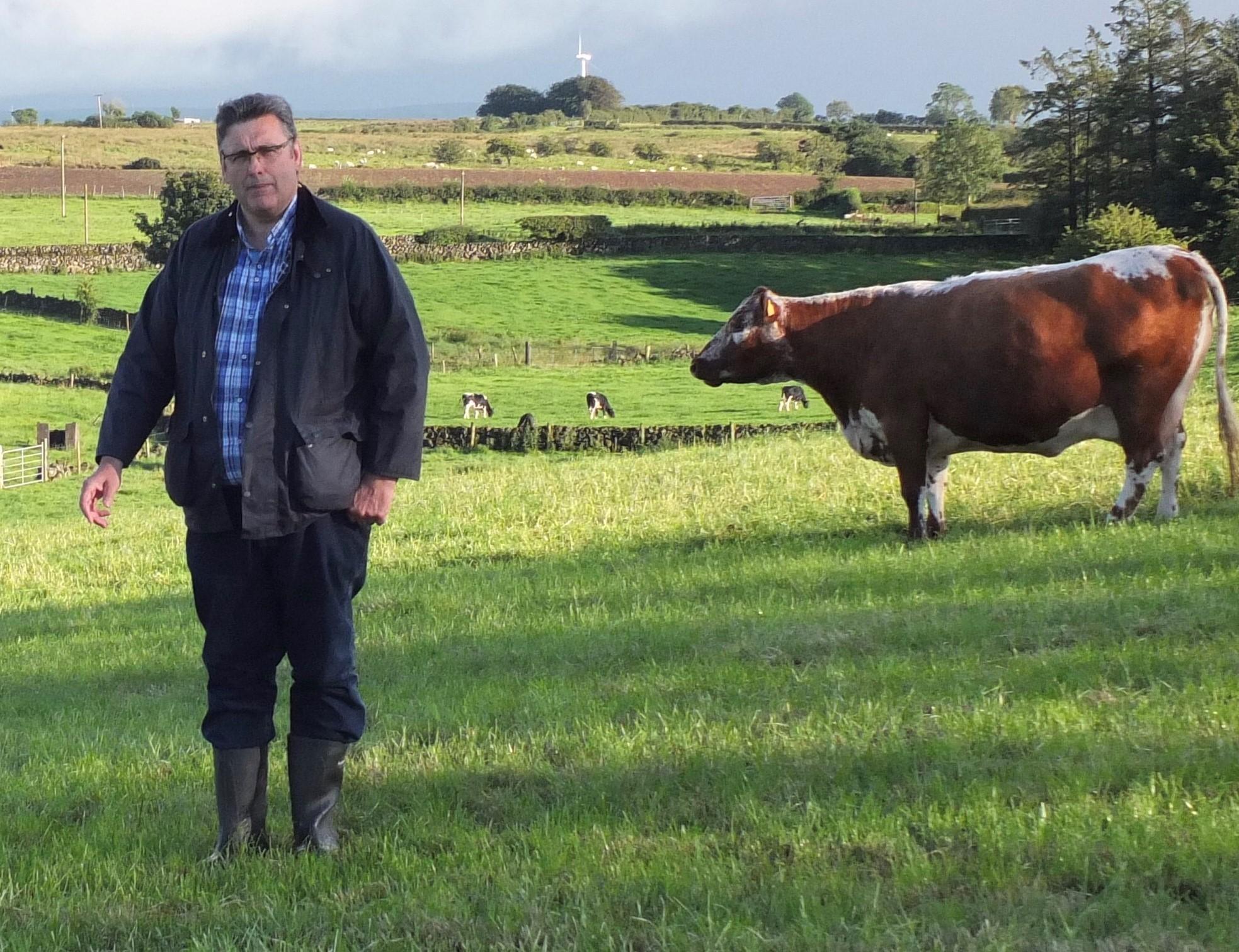 Irish Moiled Chairperson Brian O'Kane