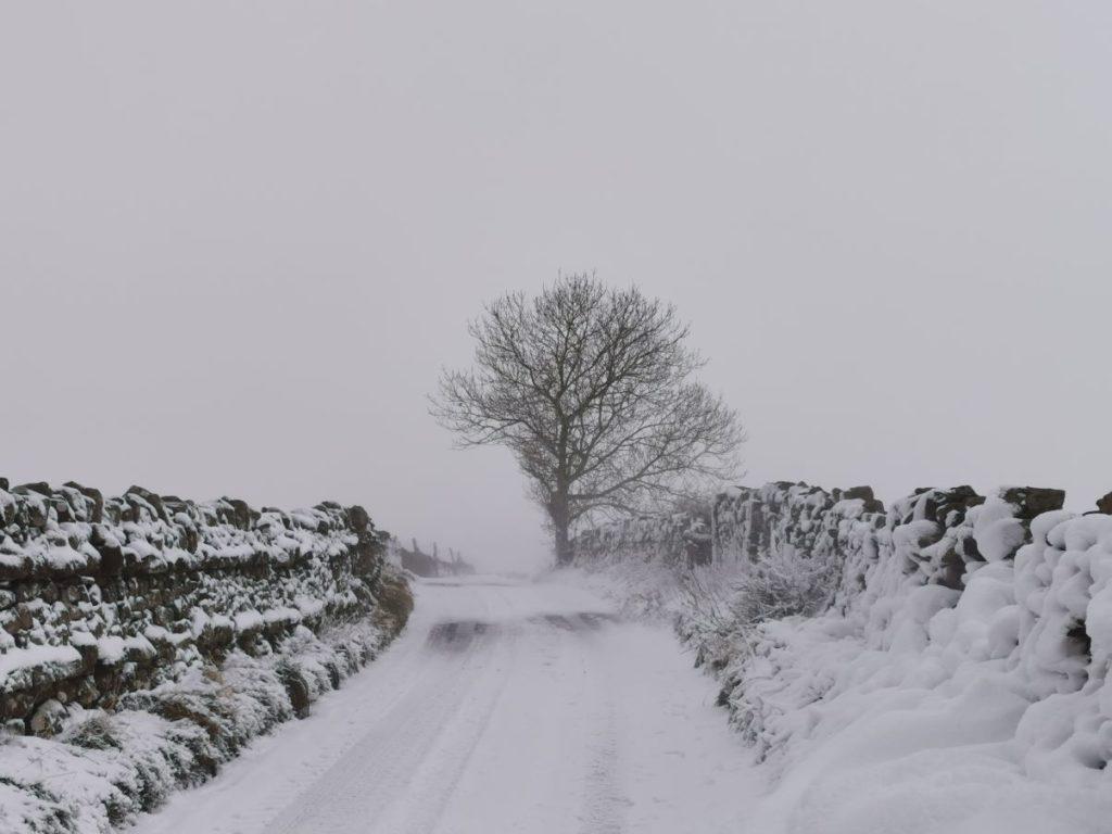 Murton, near Appleby by Clare Cooper