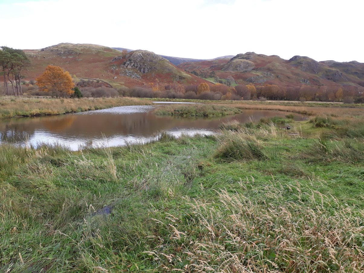 New large pond at the Naddle