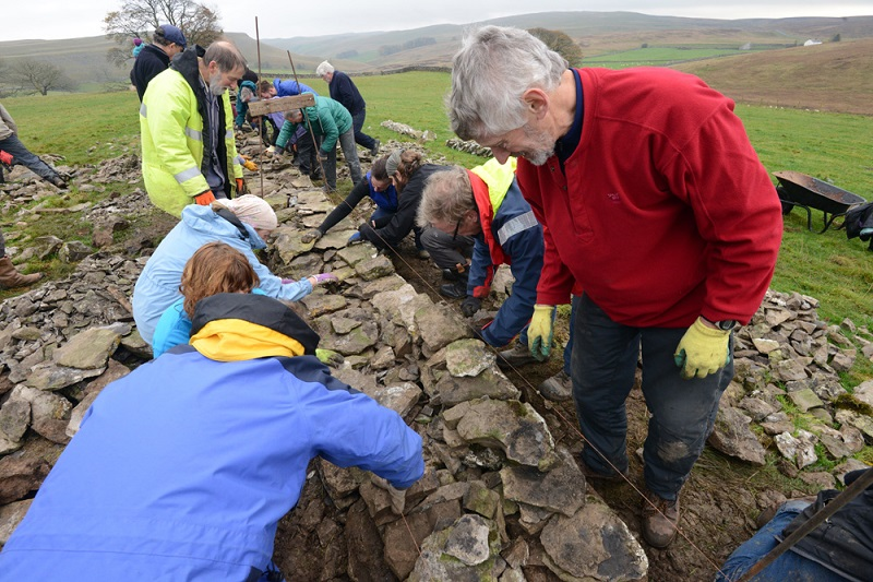 Dry stone walling competition