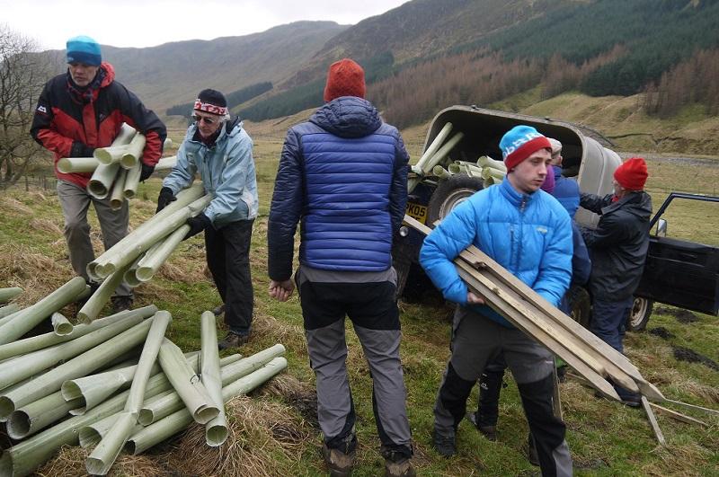 Volunteers planting trees at High Borrowdale