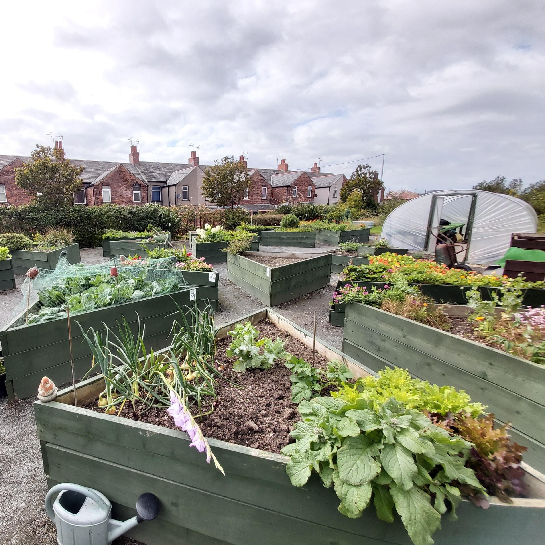 The Green Heart Den at Barrow