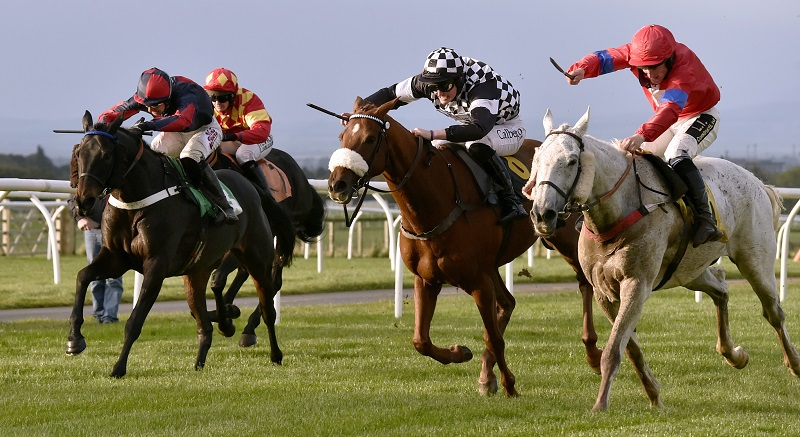 Racing at Carlisle Racecourse