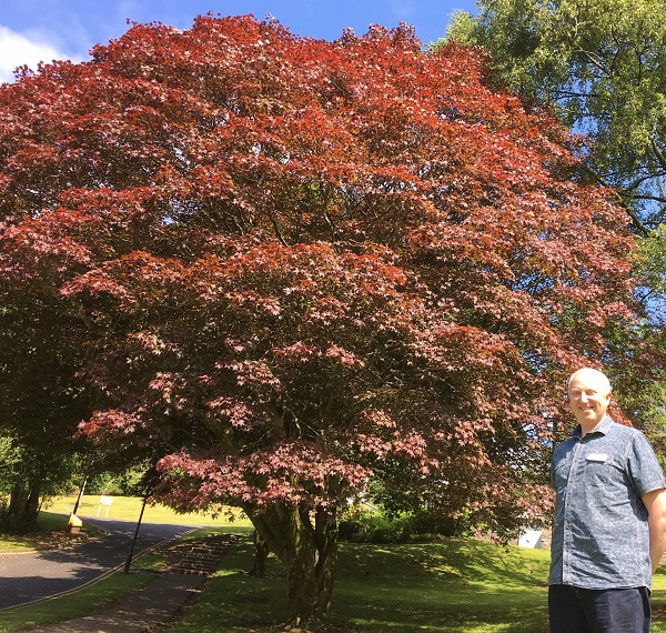 University of Cumbria Ambleside campus manager Rob Wilson with the student tree