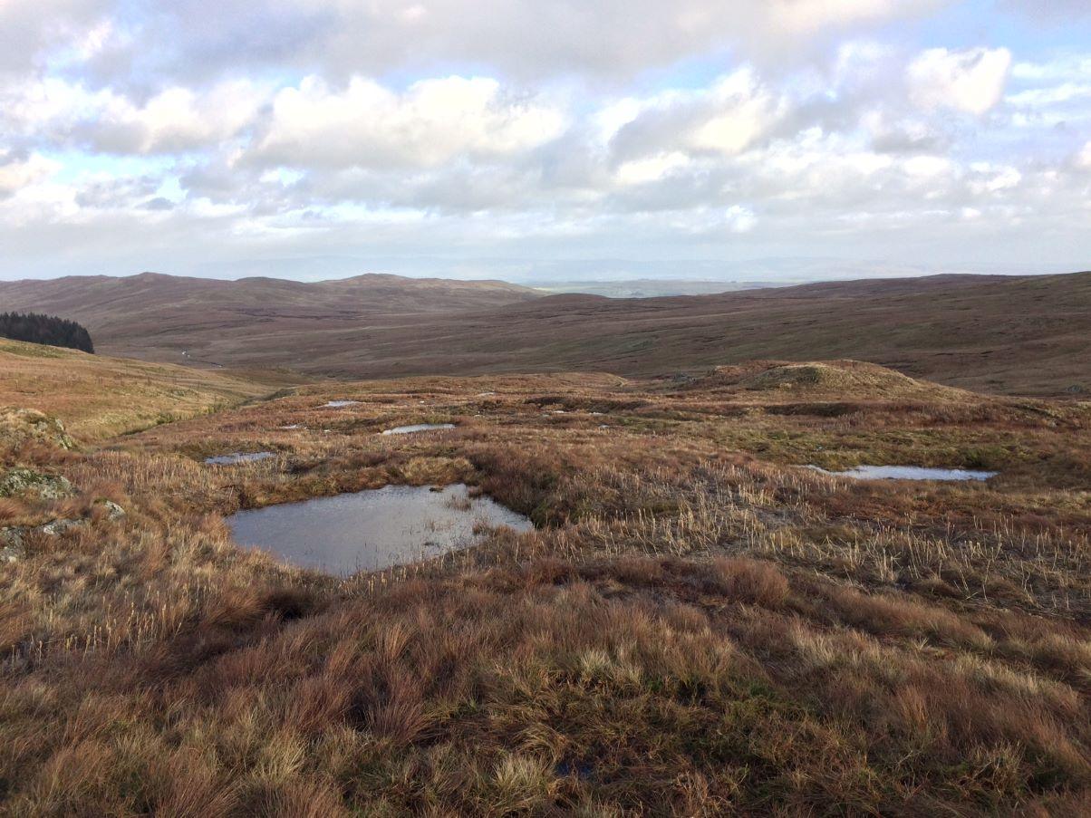 Peatland restoration work on Shap Fells. Picture: Cumbria Wildlife Trust