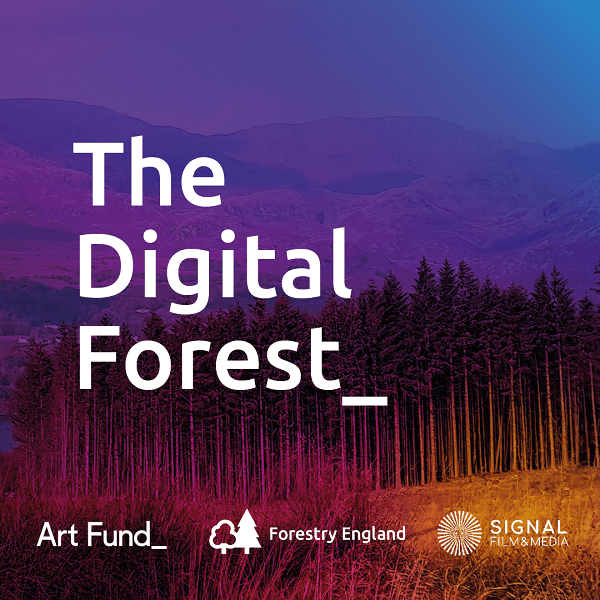 The Digital Forest