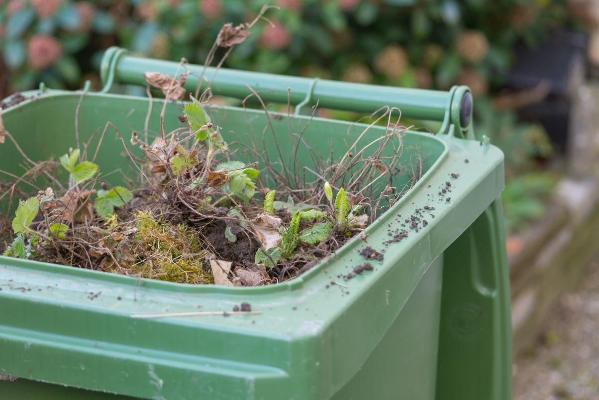 Green garden waste bin
