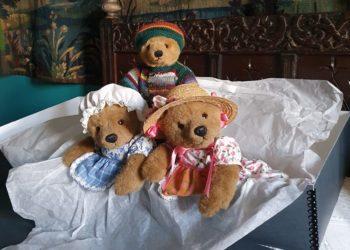 The Muncaster Teddy Bear Team