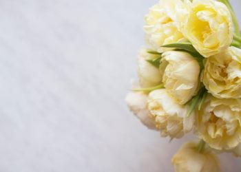Bouquet of flowers. Shutterstock