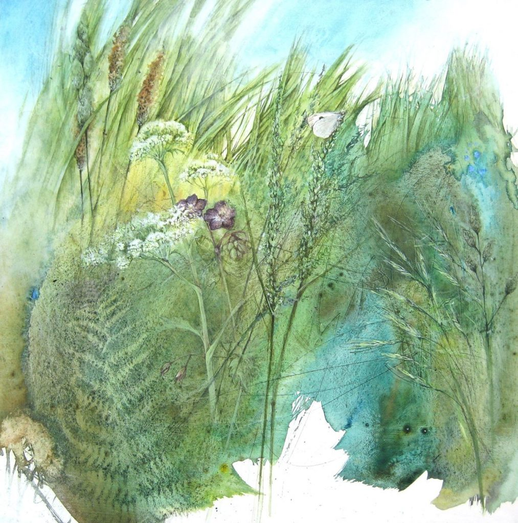 wayside grasses in spring with small white butterfly.Rachel Gibson (002)