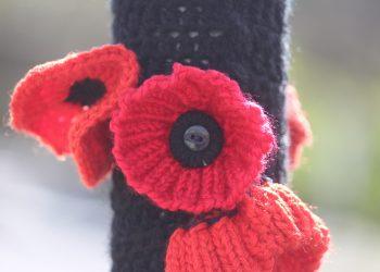 Croquet poppy