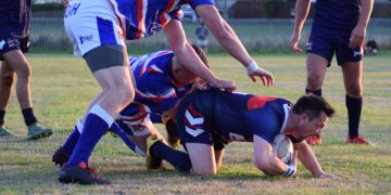 Steven Conway held up before his try. Picture Brian Atkinson